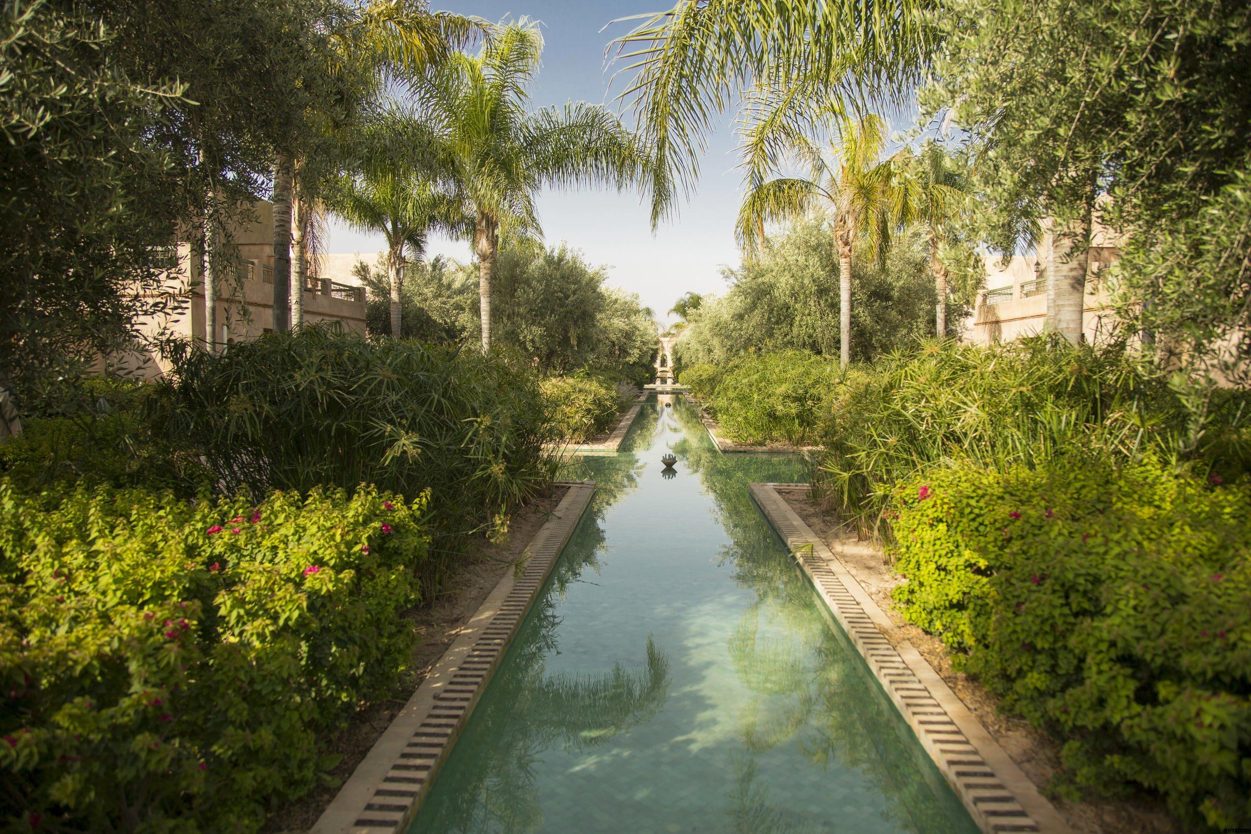 Marrakesz La Palmeraie